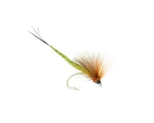 Connemara Mayfly #8