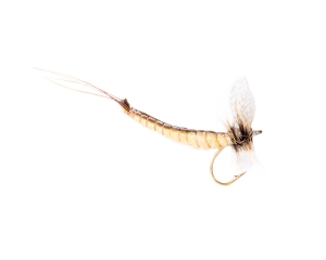 Mayfly Dun Vanilla #10