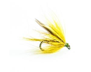 Dark Golden Olive #12