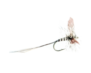 Mayfly Spent Black #10