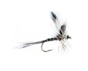 Mosquito #16