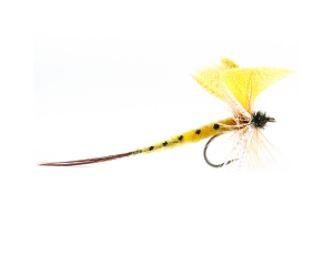 Mayfly Thomas Yellow #10