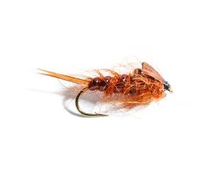 Biot Stonefly Brown #12