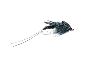 Little Black Stonefly #14